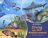 Diving into the Mediterranean