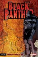 Black Panther: Ποιος είναι ο Μαύρος Πάνθηρας;