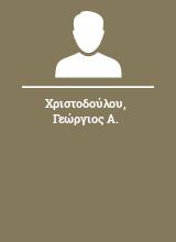 Χριστοδούλου Γεώργιος Α.