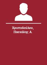 Χριστοδούλου Πασχάλης Α.